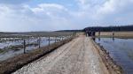 Podsumowanie wycieczki ornitologicznej Doliną Górnej Narwi