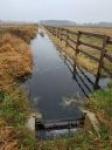 Ważna woda. Wyniki monitoringów – hydrologicznego, fitosocjologicznego i lęgowych ptaków siewkowych